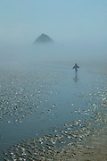 A young girl looks at her own reflection while playing in a small tidal creek near Haystack Rock on the Oregon Coast. Thick morning fog blocks the view of the base of Haystack Rock, one of the largest monoliths in the world. Haystack Rock, near Cannon Beach, Oregon, is made of remnants of ancient lava flows.