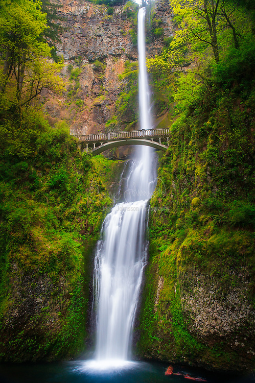 Multnomah Falls in Columbia River Gorge, Oregon.<br /> ---<br /> Multnomah Falls is a waterfall located on Multnomah Creek in the Columbia River Gorge, east of Troutdale, between Corbett and Dodson, Oregon, United States. The waterfall is accessible from the Historic Columbia River Highway and Interstate 84. Spanning two tiers on basalt cliffs, it is the tallest waterfall in the state of Oregon at 620 ft in height.<br /> <br /> The land surrounding the falls was developed by Simon Benson in the early-twentieth century, with a pathway, viewing bridge, and adjacent lodge being constructed in 1925. The Multnomah Falls Lodge and the surrounding footpaths at the falls were added to the National Register of Historic Places in 1981. Contemporarily, the state of Oregon maintains a switchback trail that ascends to a talus slope 100 feet above the falls, and descends to an observation deck that overlooks the falls' edge. The falls attract over two million visitors each year, making it the most-visited natural recreation site in the U.S. Pacific Northwest.
