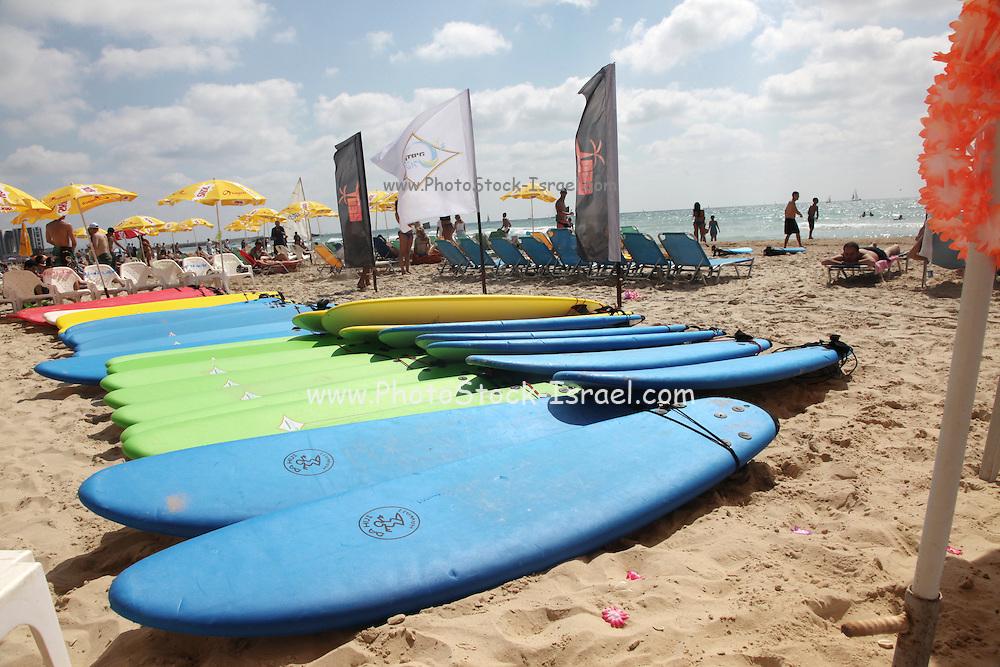 Beach sports Surfboards on the beach