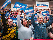 02 MARCH 2020 - ST. PAUL, MINNESOTA: People cheer at a Bernie Sanders Get Out the Vote rally in the RiverCentre in St. Paul. More than 8,400 people attended the rally. Minnesota is a Super Tuesday state this year and Minnesotans will go to the polls Tuesday. Minnesota Sen. Amy Klobuchar was expected to win her home state, but she dropped out early Monday, March 2.        PHOTO BY JACK KURTZ