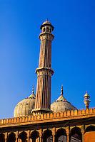 Minaret and domes of the Jama Masjid Mosque, Delhi, India