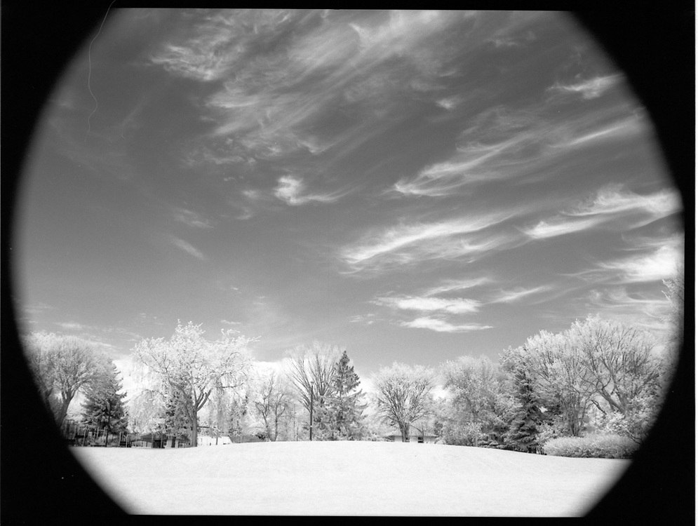 Wiggins Park, Saskatoon, Saskatchewan. Rollei Infrared 400 120mm, 2017-05-20, Hoya R72 filter, 1/4 @ f/16.