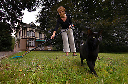 SPA, BELGIUM - AUGUST-19-2005 -  Kerstin Czajkowski, does some yard work as the family cat stands guard. Czajkowski and her husband live in Luxembourg but recently purchased this villa in Spa for weekends and vacations. (Photo © Jock Fistick)