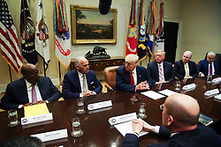 U.S. President Donald Trump leads a listening session with health insurance company CEO's in the Roosevelt Room of the White House, Washington, DC, February 27, 2017. (Pool / Aude Guerrucci)