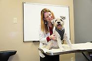 Desert Veterinary Medical Specialists