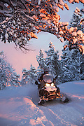 A snowmobile drives down a track through the snowy woods in Kirkeness, Finnmark region, northern Norway