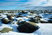 Volcanic lava mounds field like lunar landscape between Vik and Kirkjubaejarklaustur close by Katla volcano in South Iceland