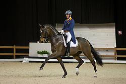 Van Silfhout Diederik, NED, Scenario 2<br /> Indoor Brabant<br /> © Sharon Vandeput<br /> 9/03/18
