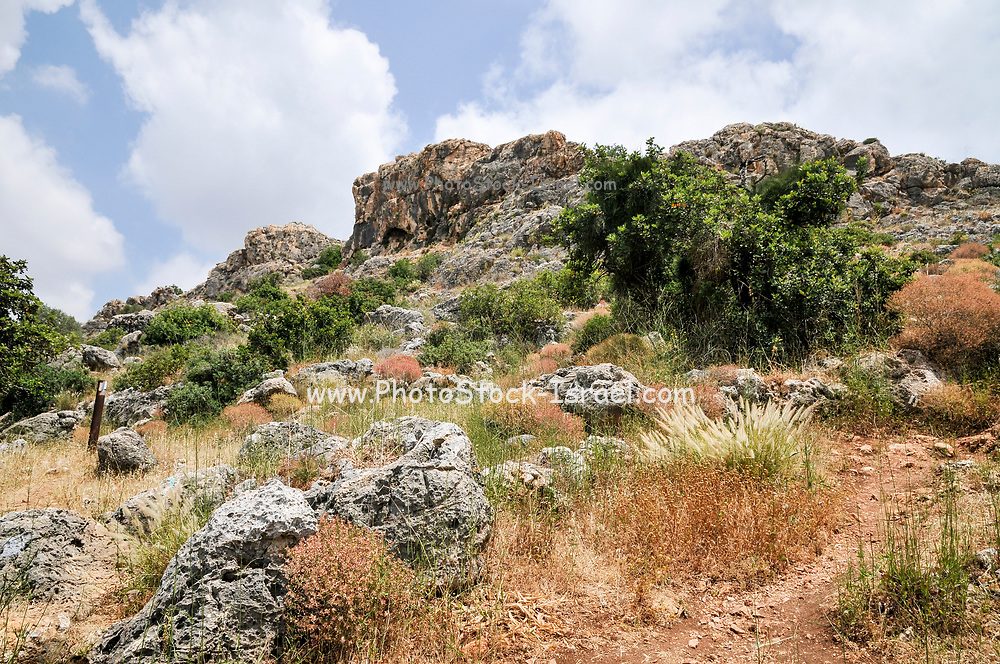 Israel, Carmel Mountain, Nahal Mearot (Cave Stream) nature reserve containing caves used by prehistoric men for 150 thousand years in three distinct cultures Acheulian culture, Muarian culture and mousterian culture. starting with Homo erectus and ending with Neanderthal