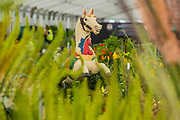 The National plant collection with fair ground props (incl Skippy the merry-go round horse) designed by t3, Wall end Nursery - Preparations for the Hampton Court Flower Show, organised by teh Royal Horticultural Society (RHS). In the grounds of the Hampton Court Palace, London.