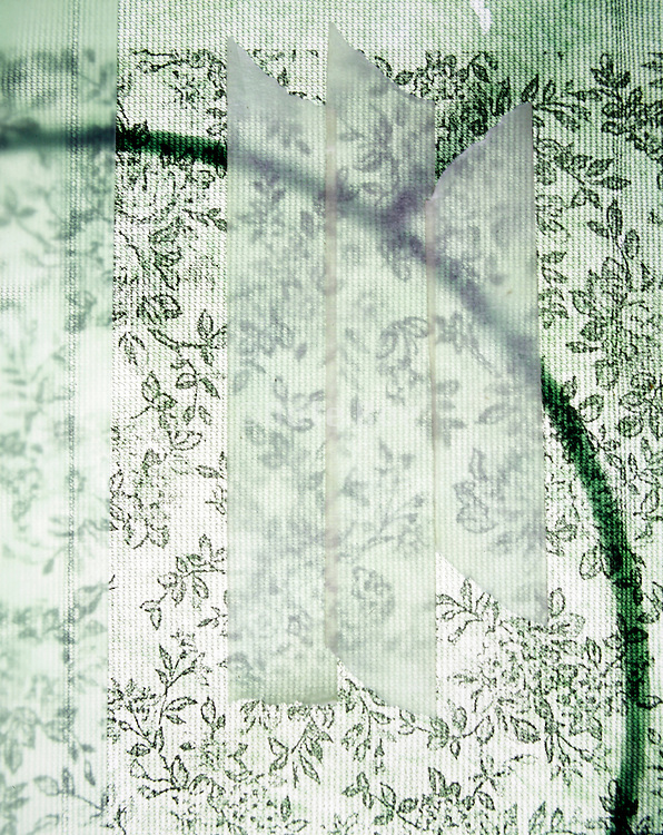 abstraction in green with floral and line forms