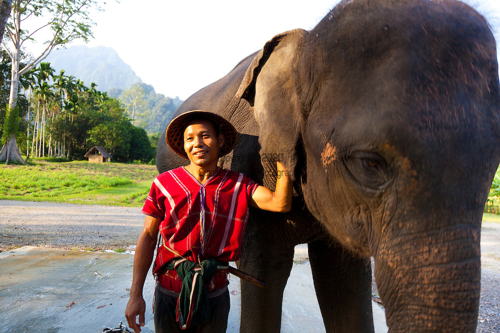Elephant Hills Luxury Tented Camp in the rainforest in Southern Thailand. The Elephant Experience which offers an opportunity to interact, feed and wash the endangered Asian Elephant. A mahout with his elephant.