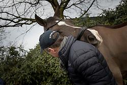 Valegro, Alan Davies<br /> Van Olst Horses - Den Hout 2017<br /> © Dirk Caremans<br /> 04/02/17