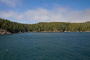Resolution Cove, Vancouver Island, British Columbia, Canada