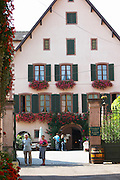 jean sipp winery ribeauville alsace france