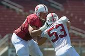 20140412 - Stanford Spring Game