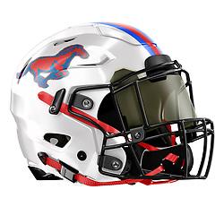 St Vincents High School Football Helmet