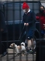 © Licensed to London News Pictures. 30/11/2020. London, UK. Prime Minister Boris Johnson returns to Downing Street with his dog Dilyn after a morning run. Later this week England will enter a new three tier plan of coronavirus restrictions to control the spread of Covid-19. Photo credit: Peter Macdiarmid/LNP
