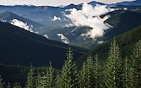 A cloud floats over the Mineral Creek valley in the Tahoma State Forest in the Cascade Mountain Range of Washington state, USA