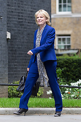 © Licensed to London News Pictures . 11/05/2015 . London , UK . ANNA SOUBRY arrives at 10 Downing Street this afternoon (11th May 2015) . Photo credit : Joel Goodman/LNP