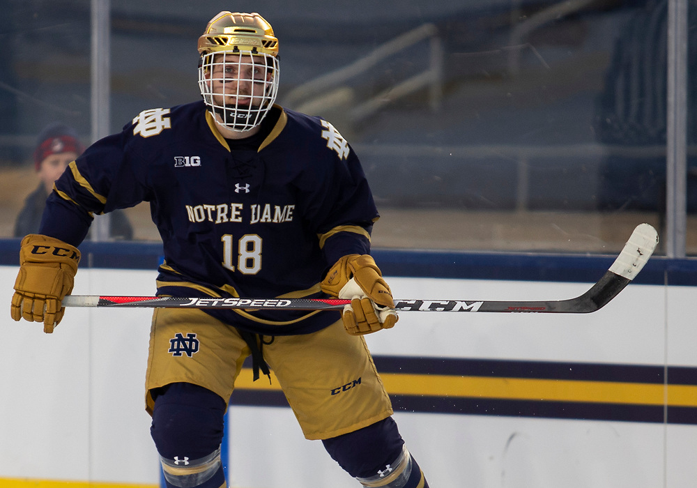 January 05, 2019:  Notre Dame forward Graham Slaggert (18) during NCAA Hockey game action between the Michigan Wolverines and the Notre Dame Fighting Irish at Notre Dame Stadium in South Bend, Indiana.  Michigan defeated Notre Dame 4-2.  John Mersits/CSM
