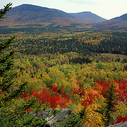 Near Russell Pond, Baxter S.P. Blazing fall colors in Baxter's Wassataquoik Valley. Northern Hardwood Forest.