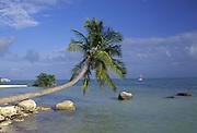 Islamorada, Florida Keys, Florida<br />