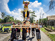 15 JULY 2016 - GIANYAR, UBUD, BALI, INDONESIA: Men carry the sarcophagus, which will be burned along with the effigy of the deceased, to the cemetery in Gianyar. Children frequently ride the sarcophagus to the cemetery. Most of the people on Bali are Hindus. Traditional cremations in Bali are very expensive, so communities usually hold one mass cremation approximately every five years. Most of the mass cremations in Bali are held in late June or early July. Gianyar, a small village about 30 minutes from Ubud, held their village wide cremation Friday. The community wide mass cremation in Ubud is Saturday.        PHOTO BY JACK KURTZ