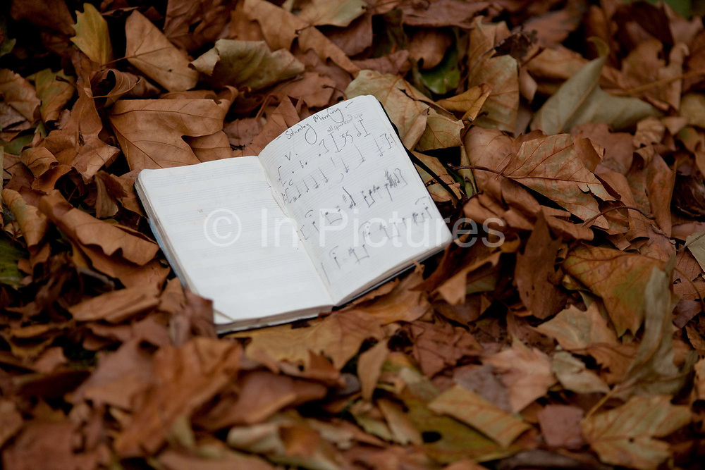 Brooke Sharkey lyrics in the leaves. At the moment there is a quiet musical revolution going on in London - the city that has spawned so many important styles and movements, now has a bubbling experimental blues and folk scene, with many musicians independently recording and distributing their own albums through crowdfunding and social media without the need of large record labels and restrictive contracts. They play week in week out in a pleathora of small, independent, underground and makeshoft venues that have sprung up such as Jamboree and 14 Bacon Street.