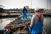 Fishermen go back to the damaged fish port to land a catch of seaweed. Now they work under the government's plan in a team to make a living but their income is way too low compare to before.