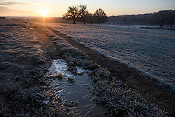 © Licensed to London News Pictures. 02/12/2019. London, UK. Frost covers the landscape at sunrise in Richmond Park in west London on a bright and freezing Winter morning. Photo credit: Ben Cawthra/LNP