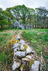 Sheeffrey Wood, County Mayo, Ireland
