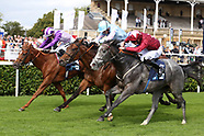 Horse Racing St Ledger Festival Day Two 120919