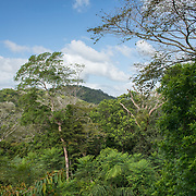 Panama Canal and Gamboa