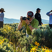 A Teton Teton Science Schools wildlife tour stops to explore the balsamroot flowers along the Antelope Flats Road in Grand Teton National Park, Wyoming.(Greg Peck, Sean Baker, Katie-Cloe Stock, Dawson-guide)