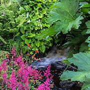 The Garden of Dunvegan Castle, Isle of Skye, Scotland, UK