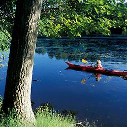Hampton, NH..Kayaking on the Taylor River where it flows through the Hurd Farm in Hampton, New Hampshire.