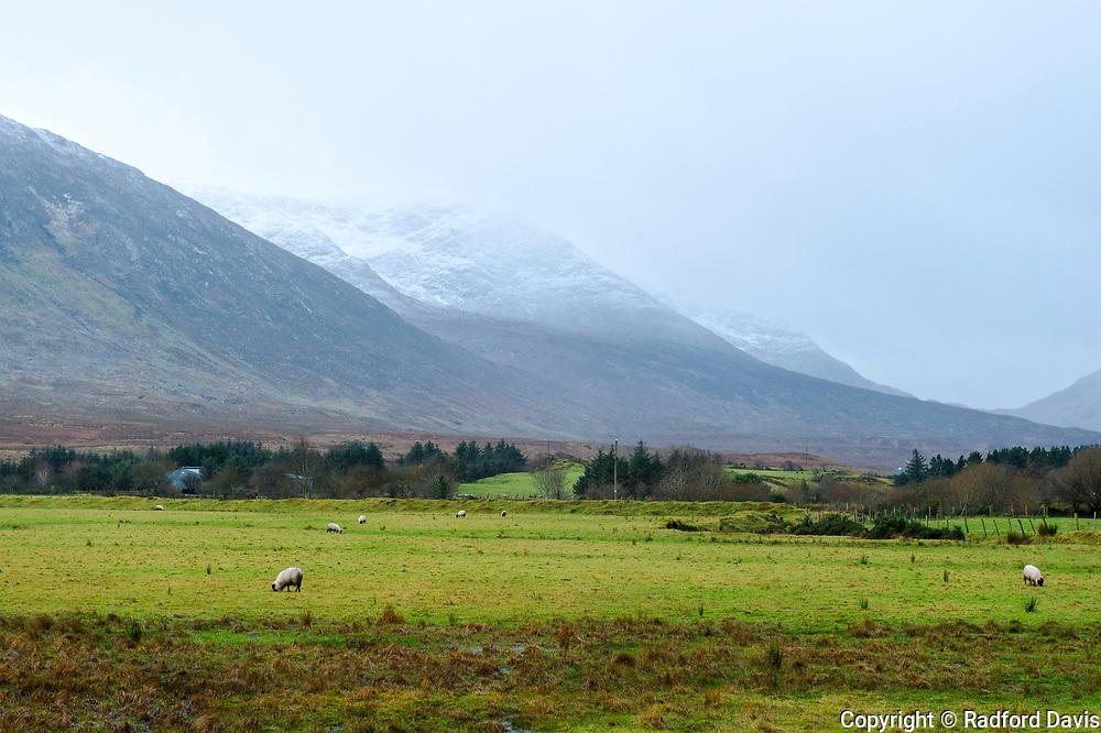 The snowy hills of Ireland