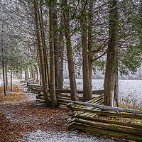 A dusting of snow on a cedar fence in early fall.