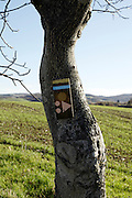 hiking trail sign in an agricultural landscape