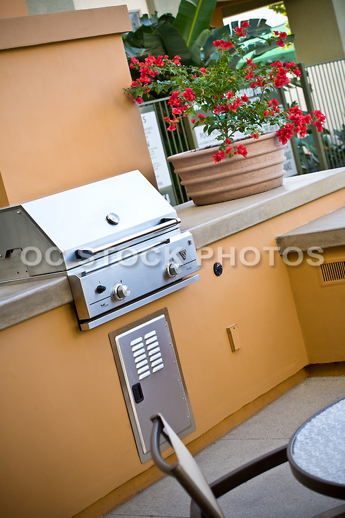 Community Living Outdoor Barbecue