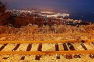 vista notturna di Trieste, view of Trieste at night