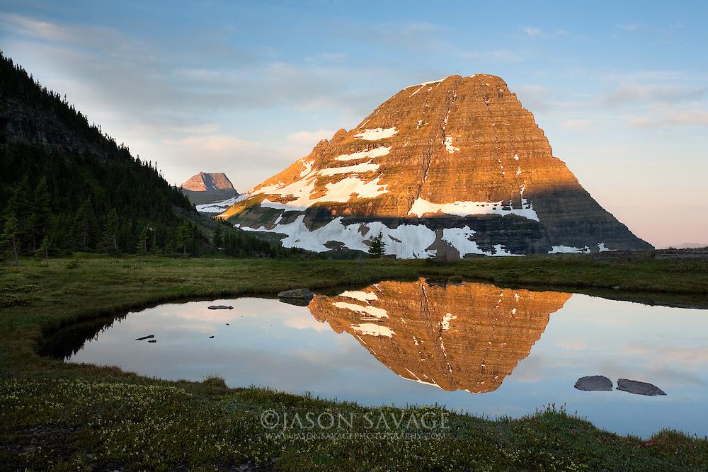 Reflection on pond near Hidden Lake,Glacier National Park.