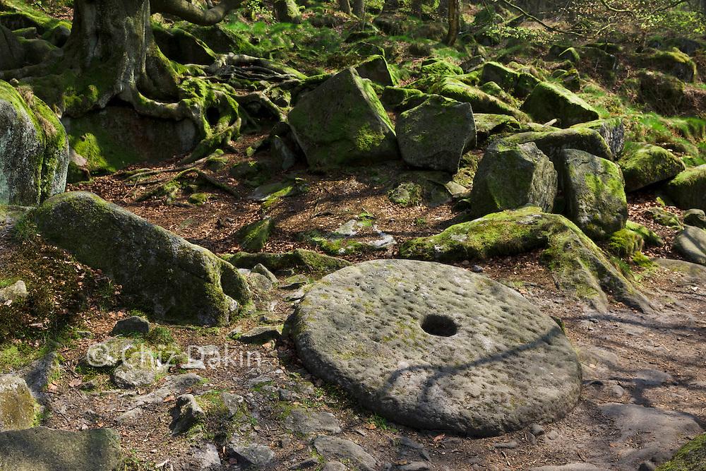 Abandoned millstone near Padley Gorge, Dark Peak, Peak District National Park