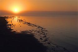 Sunrise In San Carlos