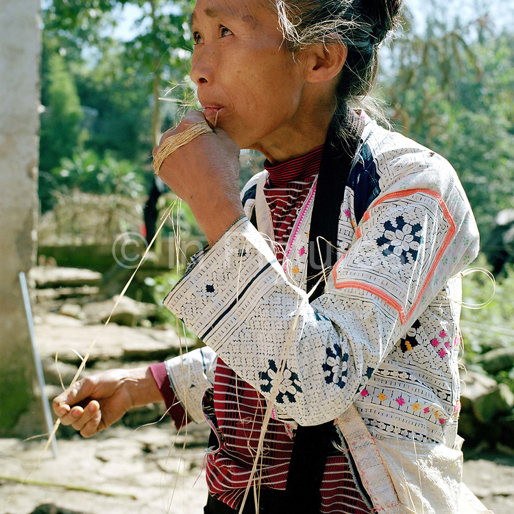 """Qing Miao (Long Horn Miao) ethnic minority woman splices hemp in Longga village (Ghao Xin), Guizhou Province, China. Although hemp production is decreasing because land is need for cash crops and manufactured cotton is readily available, it is still grown, spliced and women in remote mountain villages in Guizhou Province. Almost 35% of Guizhou's population is made up of over 18 different ethnic minorities including the Miao. Each Miao group became isolated in these mountainous regions, hence the present day diversity in their culture, costume and dialects. According to a popular saying, """"if you meet 100 Miaos, you will see 100 costumes."""""""