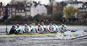 Putney - Chiswick, London,  Great Britain.<br /> CUBC. Bow: Felix Newman, 2: Ali Abbas, 3: Charles Fisher, 4: Clemens Auersperg, 5: Luke Juckett, 6: Henry Hoffstot, 7: Ben Ruble, Stroke: Lance Tredell, Cox: Ian Middleton. <br /> 2016 University Boat Race, Oxford vs Cambridge, Putney. Putney  to Mortlake, Championship Course. River Thames.<br /> <br /> Sunday  27/03/2016 <br /> <br /> [Mandatory Credit; Peter SPURRIER/Intersport-images]