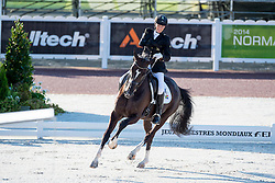Philippa Johnson Dwyer, (RSA), Verdi - Team Competition Grade IV Para Dressage - Alltech FEI World Equestrian Games™ 2014 - Normandy, France.<br /> © Hippo Foto Team - Jon Stroud <br /> 25/06/14