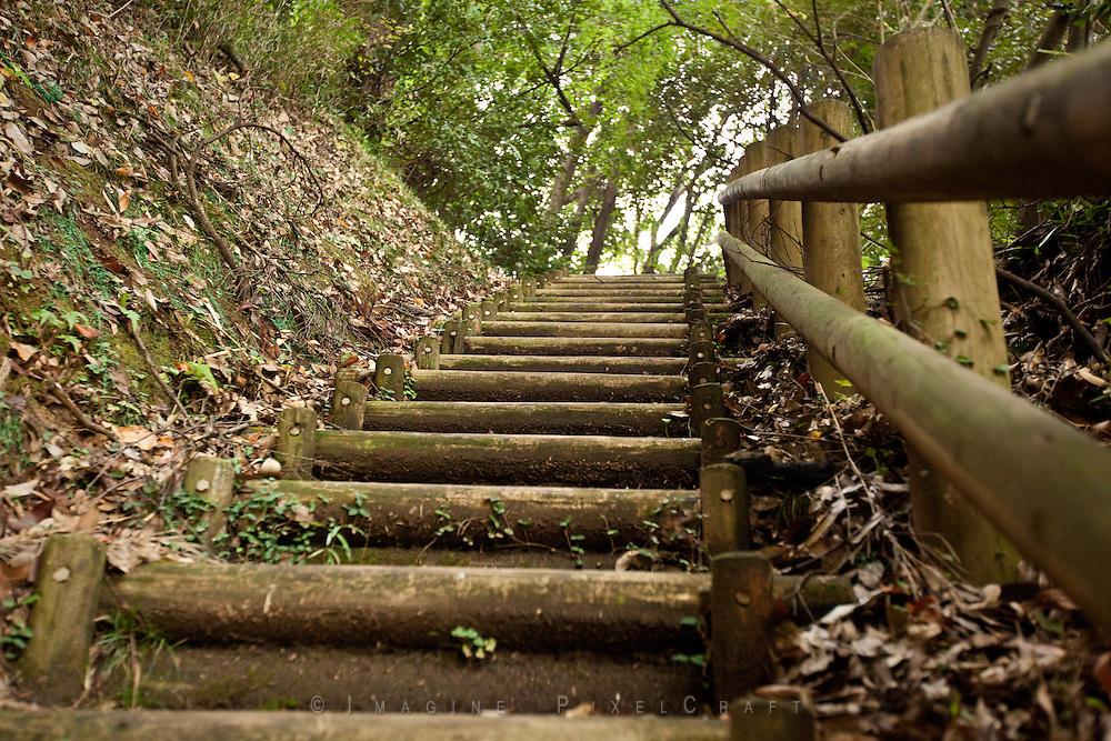Stairs on the Promenade Trail near Narita, Japan