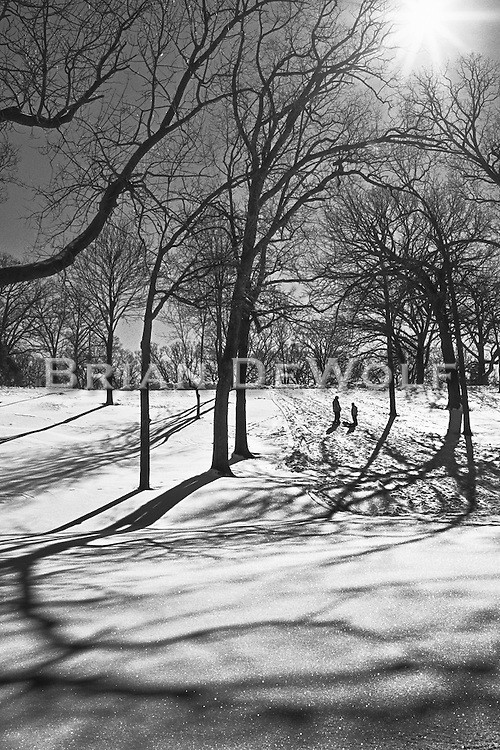 Any nearby hill is a place to sled, as these boys were doing in Phillips Park, Aurora, Illinois. The shadows on the snow make a beautiful tapestry.